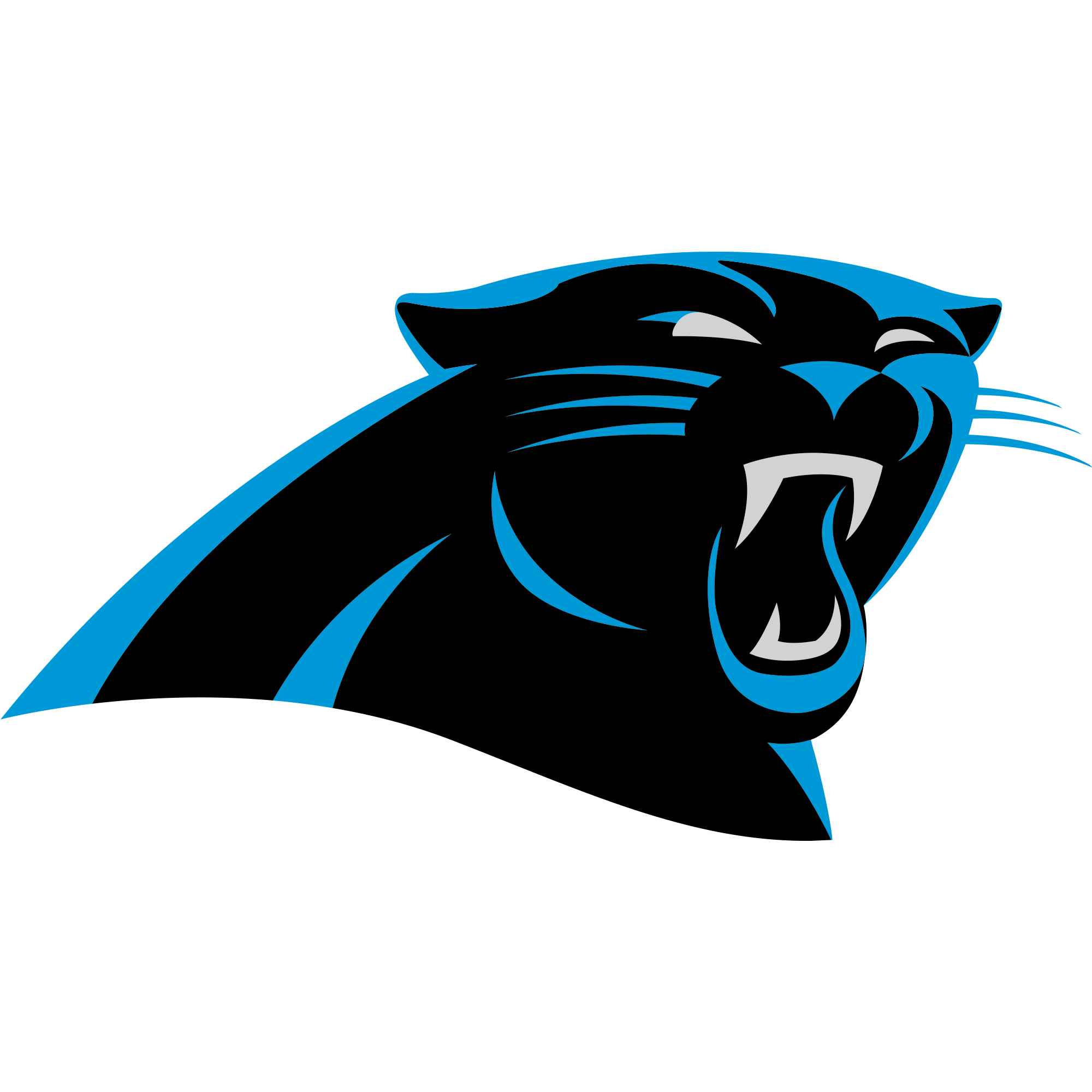 panthers game stats