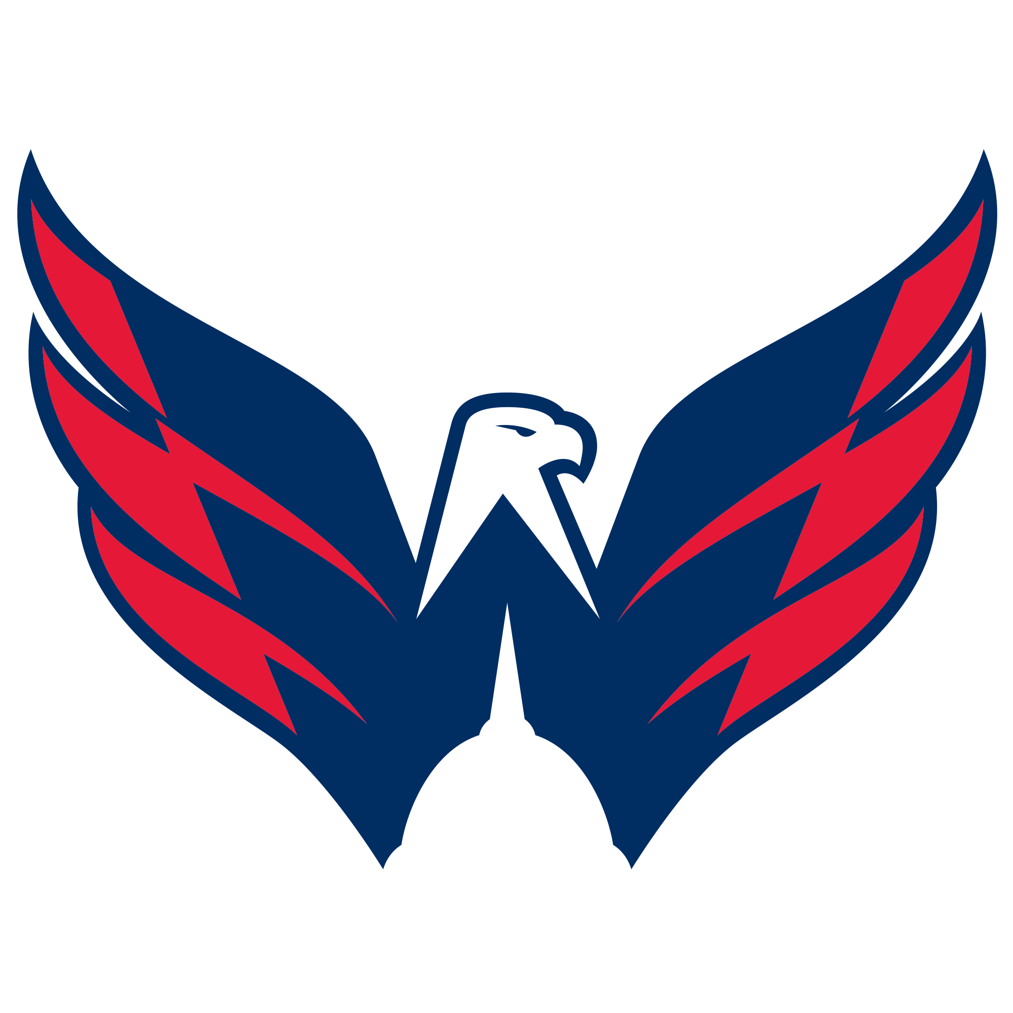 Dowd is one of only two new completely new players to the Washington Capitals in addition to forward Dmitrij Jaskin